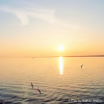 Mach mal Pause (Teil 2) Videoblogbeitrag
